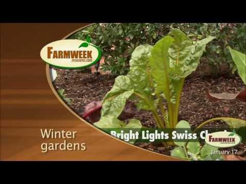 Farmweek - Entire Show - January 17, 2014