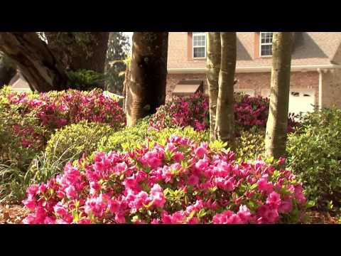Tweener Time - Southern Gardening TV May 4, 2014