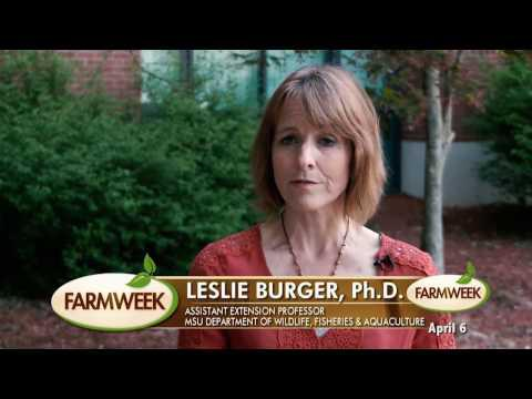 Farmweek | Entire Show | April 6, 2017