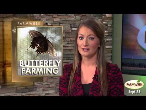 Farmweek Sept 25 2015 Entire Show
