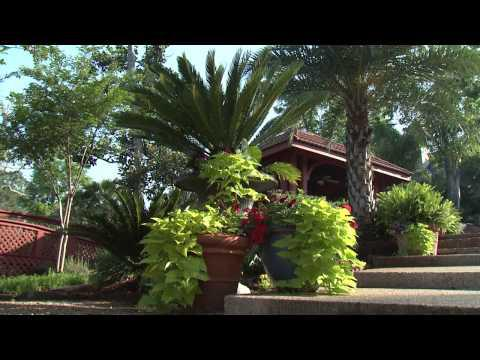Backyard Resort - Southern Gardening TV - June 26, 2013