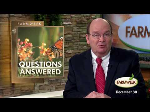 Farmweek, Entire Show, December 30, 2016
