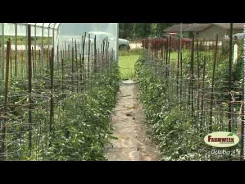 Farmweek - Entire Show - October 4, 2013
