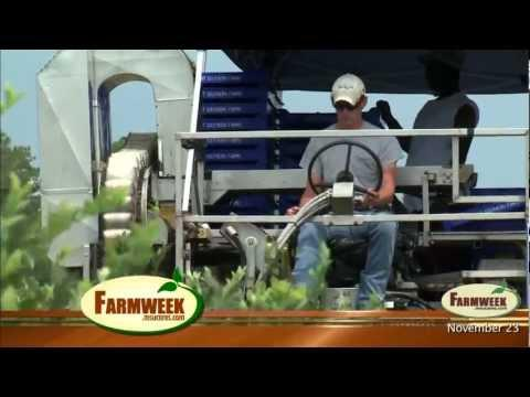 Farmweek - Entire Show - November 23, 2012