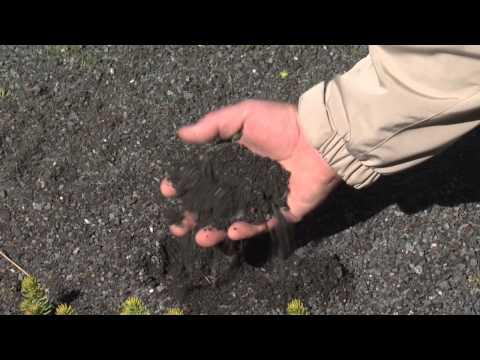 Green Roofs, Southern Gardening TV - December 26, 2012