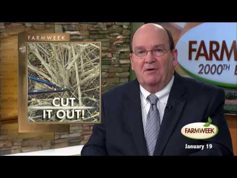 Farmweek, Entire Show, January 19, 2017