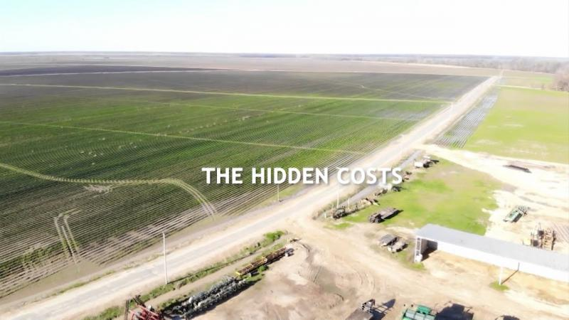 Voices From The Flood 4 | The Hidden Costs