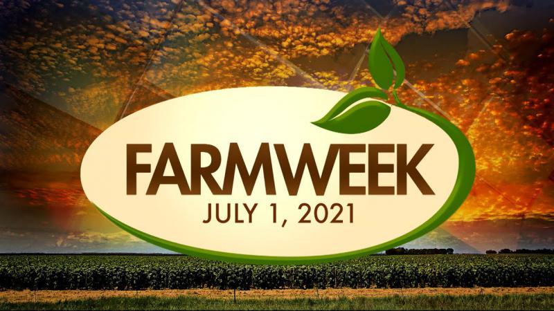 Farmweek | July 1, 2021 | Full Show
