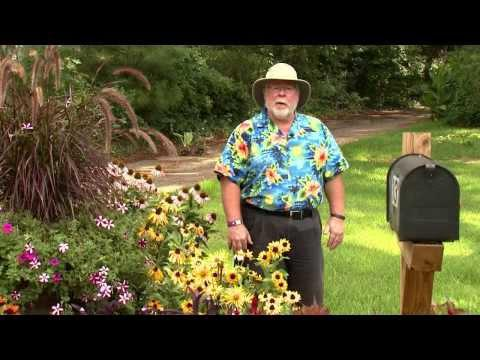 The Dog Days of August - Southern Gardening TV - August 7, 2013