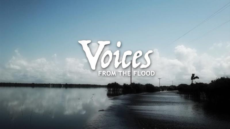 Voices From The Flood | Origin of the Series