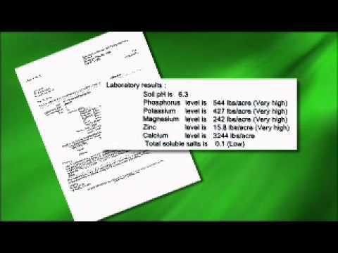 Interpreting Soil Test Results - MSU Extension Service