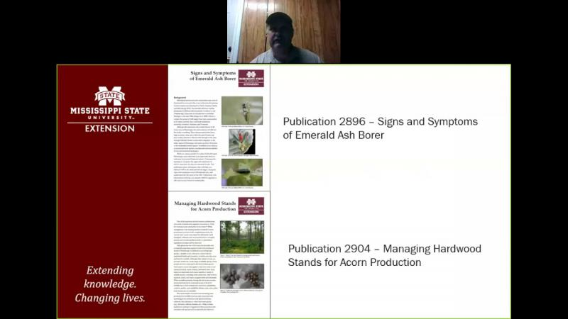 MSU Extension Hardwoods Publications Presentation