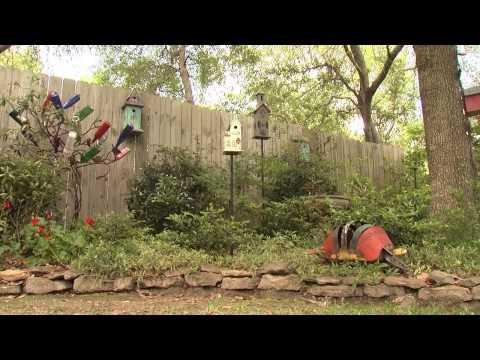 Shady Landscapes - Southern Gardening TV - June 12, 2013