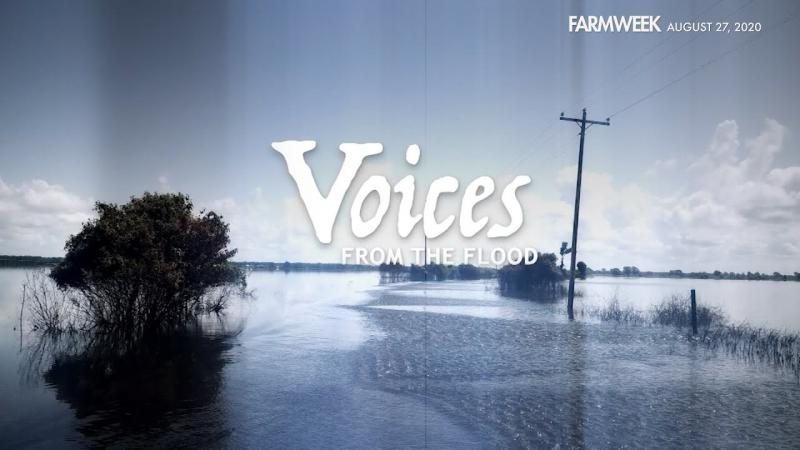 Farmweek | Voices From the Flood - Part 2 | August 27, 2020