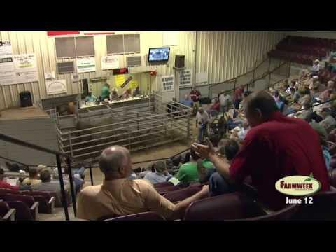 Farmweek, Entire Show,   June 12, 2015