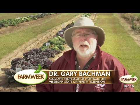 Farmweek Entire Show, Dec. 18, 2015, Season 39 Show #24