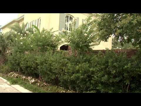 Garden Walls - Southern Gardening TV - September 11, 2013