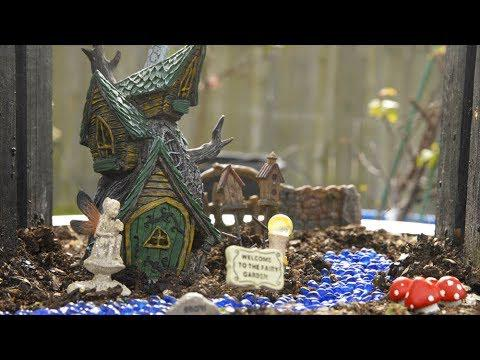 Little Free Libraries and Fairy Gardens