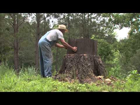 Southern Gardening TV - From Eye-sore to Eye-candy, May 29, 2013