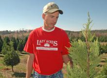 Mississippi Christmas tree grower Michael May examines a 4-year-old Leyland Cypress on his farm, Lazy Acres Plantation in Chunky. (Photo by Patti Drapala)