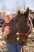 Sally Tipton of Starkville cares for a 26-year-old thoroughbred retired race horse named, Teak. Teak's gray patch of hair on his forehead is a typical sign of aging.