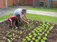 Mississippi State University senior landscape contracting student David Russell from Bogue Chitto works with a preschooler in Emerson Family School's garden. (Photo by Brian Trader/MSU Department of Plant and Soil Sciences).