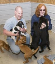 Mississippi State University veterinary medical student Wade Bowers of Memphis and Aberdeen animal shelter manager Astrid Peterson play with several of the dogs at the facility. (Photo by Tom Thompson)
