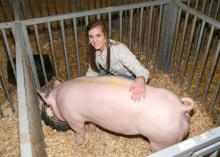 Lee County 4-H'er Taylor Scott, 17, has earned money for her college education by showing hogs in the 4-H livestock projects, a program of Mississippi State University's Extension Service. (Photo submitted)