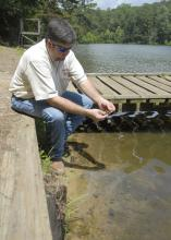 Chickasaw County Extension director Scott Cagle examines the last of some pond weeds in the lake at Camp Tik-A-Witha, operated by the Girl Scouts Heart of the South organization. Cagle helped the camp locate donors to pay for stocking grass carp to restore the lake to swimming quality. (Photo by Linda Breazeale)