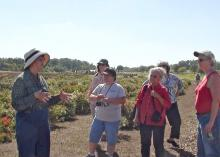 Pam Collins (left), assistant research/Extension professor and director of gardens in Mississippi State University's Department of Plant and Soil Sciences, leads a group of prairie wildflower enthusiasts on a tour of research plots at MSU's North Farm to promote the restoration and preservation of Mississippi's vanishing prairie ecosystems. (Submitted photo.)