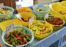 Cooper Farms, located in Smith County, offered a variety of colorful peppers at the Mississippi Farmers Market on High Street in Jackson, Mississippi, Aug. 5, 2014. Consumers increasingly turn to truck crops farmers for locally grown fruits and vegetables. (Photo by MSU Ag Communications/Susan Collins-Smith)