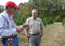 Christmas tree producer Don Kazery Jr., left, discusses agricultural practices on his Hinds County farm with Stephen Dicke, a forestry professor with the Mississippi State University Extension Service, on Nov. 6, 2014. Harsh weather conditions in 2014 and several years of high demand reduced the number of trees available in heavily populated counties. (Photo by MSU Ag Communications/Susan Collins-Smith)
