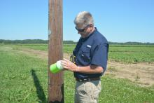 Mississippi Boll Weevil Management Corp. representative Mike Mullendore checks one of the cone-shaped traps located near a Mississippi State University research field on June 27, 2017. The traps evolved from U.S. Department of Agriculture research at the Robey Wentworth Harned Laboratory, commonly known as the Boll Weevil Research Lab at MSU. (Photo by MSU Extension Service/Linda Breazeale)
