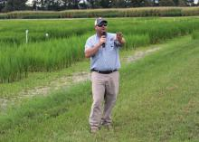 Bobby Golden, a rice and soil fertility agronomist with the Mississippi State University Extension Service, speaks to attendees of the MSU Delta Research and Extension Center Rice Producer Field Day in Stoneville, Mississippi, on Aug. 2, 2017. (Photo by MSU Extension Service/Kenner Patton)