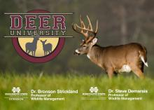 Deer University podcast launches May 11 and will be available to listeners free of charge.