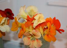 A bouquet of small, orange and yellow flowers.
