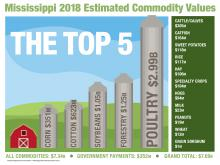 This illustration shows the top five agricultural commodities in Mississippi in a bar graph with each bar resembling a silo standing next to a barn. The top five commodities are poultry, forestry, soybeans, cotton and corn. Other commodities are also listed.