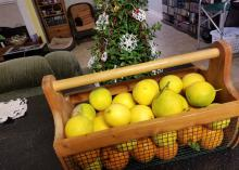 A wooden and wire basket full of yellow and orange fruit sits indoors with a Christmas tree in the background.