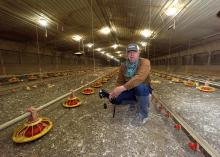 A man wearing a baseball caps squats down inside a poultry house, holding a black camera. Feeders line the floor in rows, small, yellow chicks feed nearby, and the house stretches behind him in the distance.
