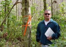 Man holding a clipboard looks at camera while standing in a wooded area beside a tree with orange ribbons tied around the trunk at shoulder height.