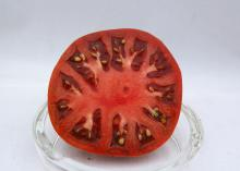 The open half of a dark-red tomato sliced through the middle appears in a clear glass bowl in a plain white setting.
