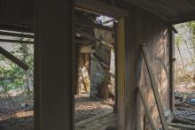 An open doorway leads into an abandoned wooden shack.