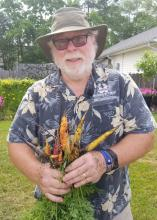 A man holds a handful of just-pulled yellow and orange carrots.