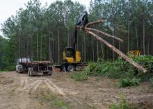 A large, yellow machine lifts downed trees to load onto a log truck.