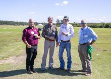 Four men stand in a sod farm.