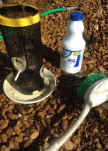 Bird feeder, bottle of bleach and cleaning brush.