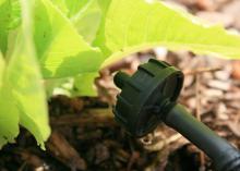 A round, black plastic head faces a plant.