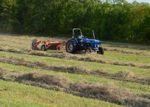 Johnny Howell rakes his last row of hay before moving on to the next field on Aug. 3, 2016, in the Bell Schoolhouse Community north of Starkville, Mississippi. The state's hay production is projected to fall slightly this year, as growers face heat-induced infestations of fall armyworms. (Photo by MSU Extension Service/Linda Breazeale)