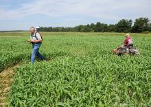 Stanley Wise, Union County Extension director, used a GPS unit to map out a maze for Andy Clark to mow into his sorghum-Sudangrass field at Clark Farms in Chickasaw County on Sept. 12, 2012. Clark added the agritourism business to his sweet potato operation and has found grass easier to grow for his maze than corn. (Photo by MSU Ag Communications/Scott Corey