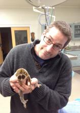 Andrew Kouba, the new head of the Mississippi State University Department of Wildlife, Fisheries and Aquaculture, holds a slender loris. (File photo)